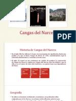 Presentación como PowerPoint_Cecilia.pptx