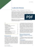 PLACENTA HUMANA.pdf