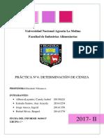 analisis lab 4 cenizas TERMINADO.docx