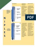 GRUPO1   NIPLES.docx