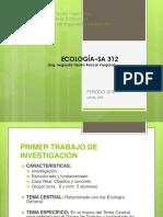 20_INFORME_TECNICO.ppt