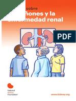 prevencion de enfermedad renal.pdf