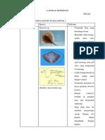 LAPORAN REFERENSI Pisces.docx