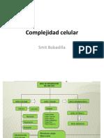 Complejidad Celular