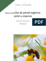Clase 3. Microfósiles de Pared Orgánica. Polen y Esporas
