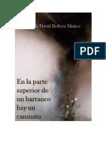 En La Parte Superior de Un Barranco Hay Un Caminito - Frank David Bedoya Muñoz