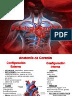 FISIOLOGIA CARDIACA