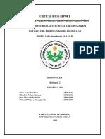 CRITICAL BOOK REPORT ipa.docx