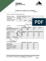 INSPECCIONES  EXTERNAS.docx