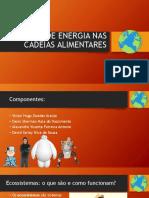 O FLUXO DE ENERGIA NAS CADEIAS ALIMENTARES.pptx