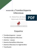 anemia y trombocitopenia