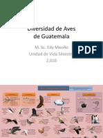 Diversidad de Aves 2016