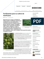 Fertilizantes Para Tu Cultivo de Marihuana