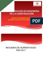 Resumen Normatividad Ras 2017
