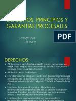 (2) 2017 II Principios Procesales