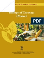 Biology_of_Maize.pdf