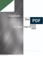 4. Capítulo_2.1_GEO.pdf