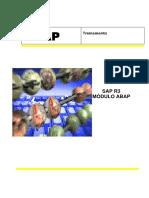 Material Didatico ABAP