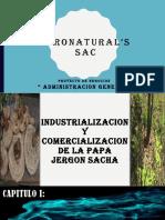 AGRONATURAL'SPROYECTO DE ADMINISTRACION.pptx