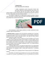 Anlise_Combinatria.pdf