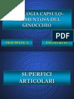 Patologia_del_ginocchio.pdf