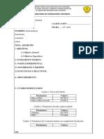 Adsorcion informe.docx