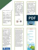 318764539 Triptico Estados de La Materia Docx Convertido