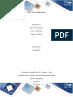 Fase 3_Grupo_6 diseño.docx