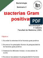 Seminario_2_Bacteriología_2°_Cuatrimestre_2017.pdf