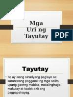 Tayu Tay