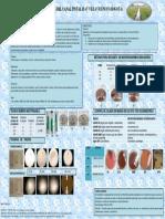 Póster final procesos biológicos estudio Canal Tintal