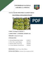 ATM MODIFICADA _TECNO 1 ya intro y marco teorico.docx