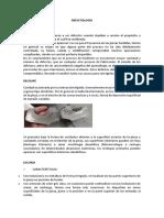 DEFECTOLOGÍA.docx