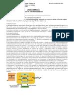guía preparatoria 8vo básico.docx