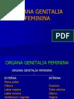 10A. reproduksi wanita