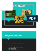 cluster biology of plants