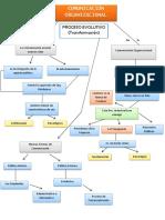 COMUNICACION ORGANIZACIONAL - MAPAS CONCEPTUALES