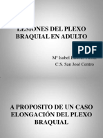 lesionesdelplexobraquialenadulto-130211105316-phpapp01.pdf