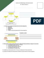 Modelo Examen Metodologia Entrenamiento Deportivo