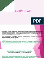 La Circular. Presentacion1