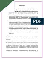 ENDOSCOPÍA.docx