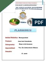 PALUDISMO 2017.docx