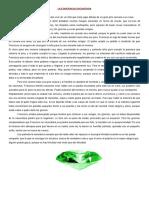 LA ESMERALDA ENCANTADA 1.docx