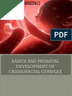 Basics and Prenatal Development