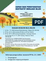 BLUD SBW-RSB.pptx