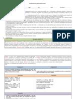 1. Formato de programación.docx