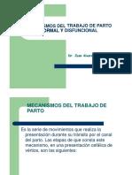 Mecanismos del trabajo de parto normal y disfuncional Dr.pptx