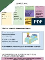 ansiedad por separación-CONFLICTO CON LA MASTURBACIÓN. .pdf