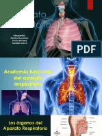 SISTEMA RESPIRATORIO.pptx.pdf