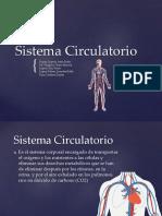 Anthem Sistema Circulatorio